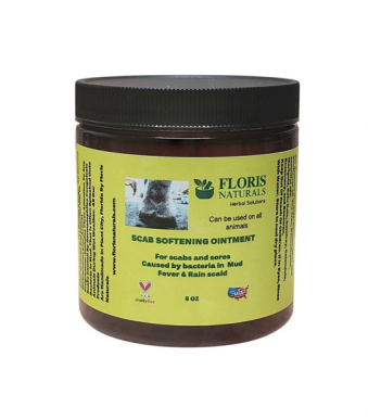 Banzai Wellness Network Natural Equine Scab Softaning Ointment