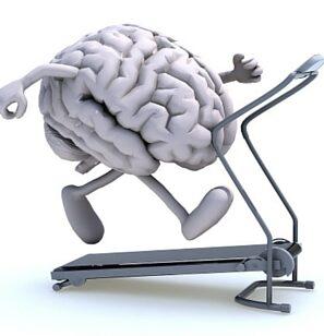 Brain Wellness